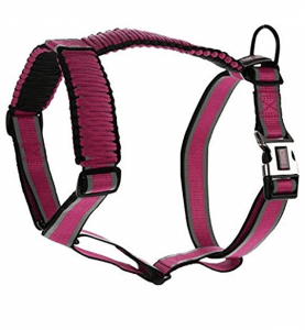 how to tighten a kong dog harness