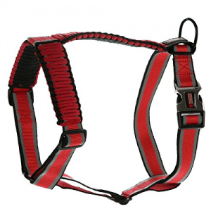 kong on the go harness